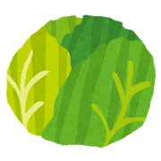 vegetable_cabbage2.png